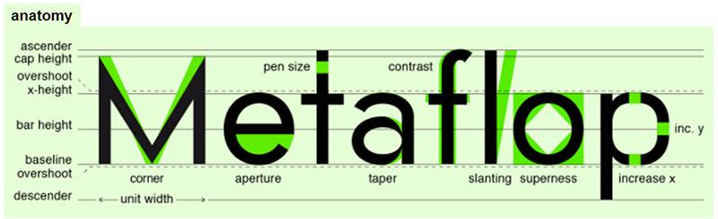 Metaflop: Anatomy Window